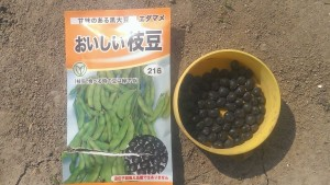 s-おいしい枝豆袋と種