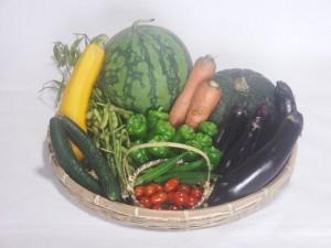 s-01-3野菜詰め合わせ