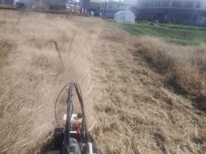 s-03-1草刈り中