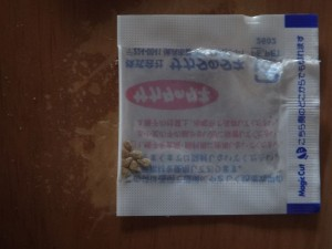 s-02-1中玉トマト種
