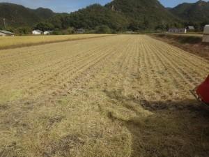 s-07-2収穫完了